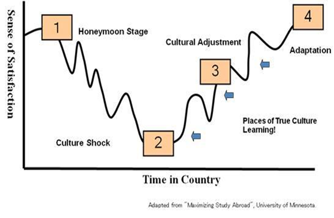 Diagram of the Stages of Culture Shock