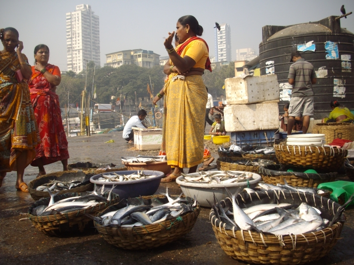 Fish Auction Mumbai